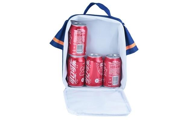 Lunch & Cooler bag