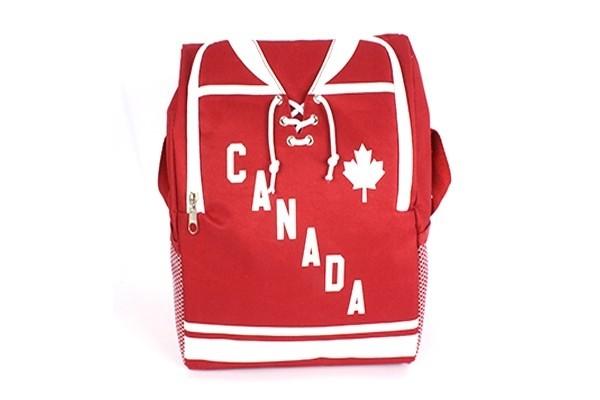 12 CAN Lunch Bag & Cooler bag